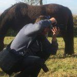PaardInNood-GezondheidsPraktijk-Aqua-Roermond-Foto